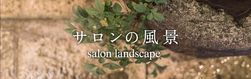 サロンの風景